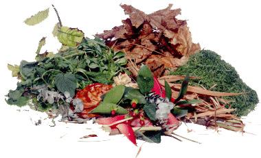 tas de déchets verts